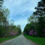 Backroads Near The Cabin